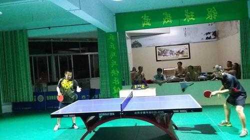 姚黄对决.jpg