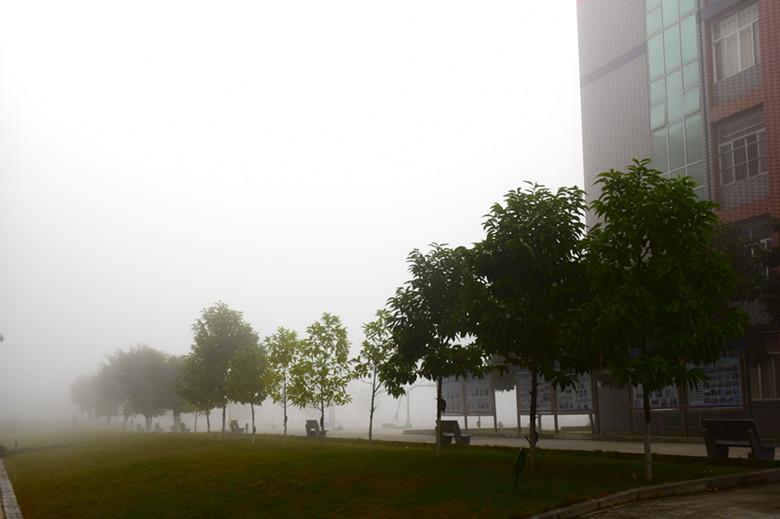 雾2.jpg