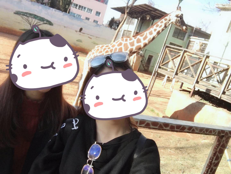 动物园3.jpg