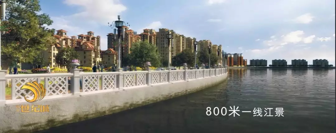 640.webp (12).jpg